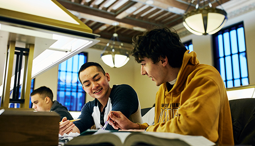 Two students studying together in a library