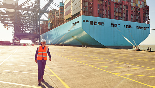A transportation worker at a container port with a container ship in the background.
